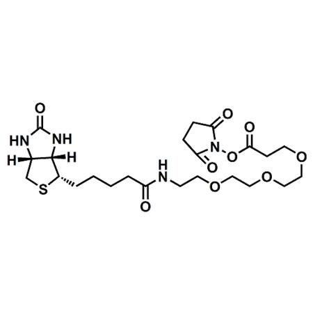 (+)-Biotin-PEG3-NHS Ester;CAS#1253286-56-4