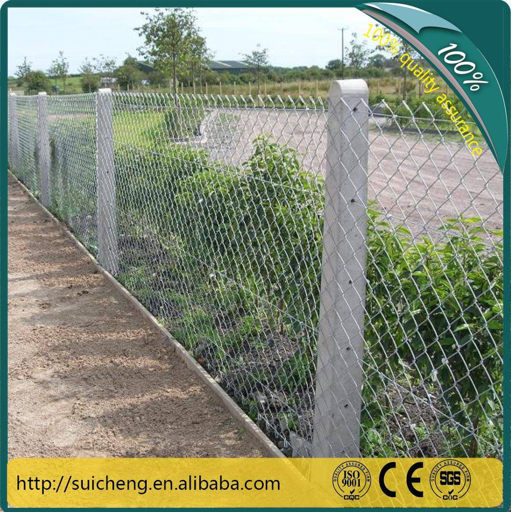 Guangzhou Factory Free Sample PVC Coated + Galvanized Chain Link Fence
