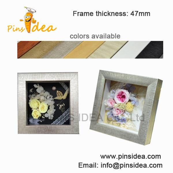 Animal and plant specimens collected wood frame