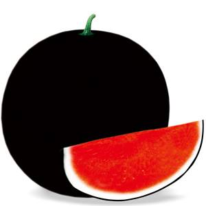 Watermelon seeds Black General 189
