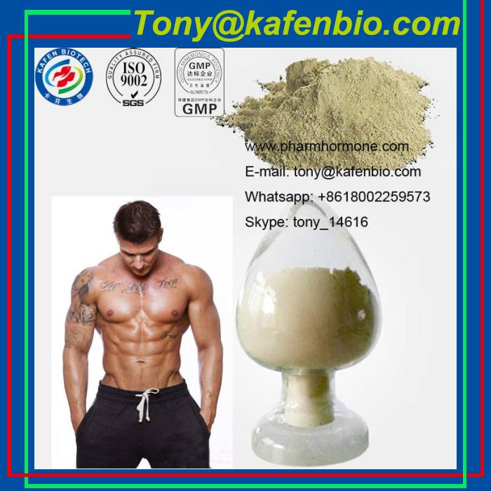 Pharmaceutical Trenbolone Steroids Parabolan 10161-33-8 Trenbolone Enanthate for Weight Loss