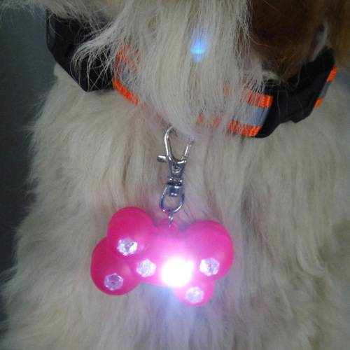 WIN-2830 6 led Custom Pet dogtags for promotion dog gifts