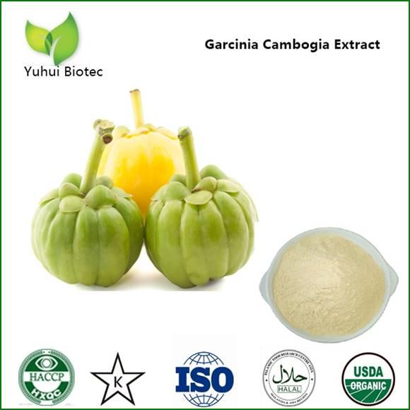 garcinia cambogia extract,slimming garcinia cambogia,garcinia cambogia powder