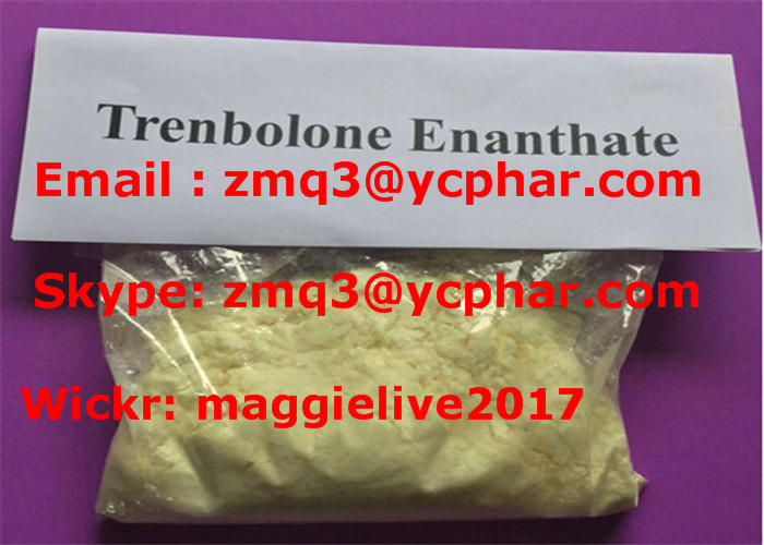 Tren E for Muscle Growth and Weight Loss Trenbolone Enanthate