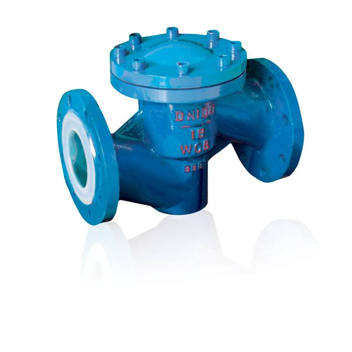 Professional China Supplier of FEP Lined Check Valve