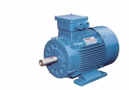 Y2/Y3 Series Three Phase Asynchronous Cast Iron Housing Motor