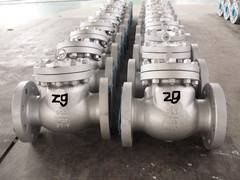 Zigong Swing Check Valve