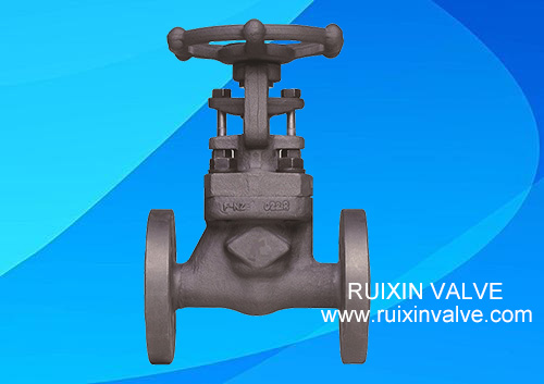 API 602 Forged Steel Flanged Globe Valve Reduce Bore OS&Y