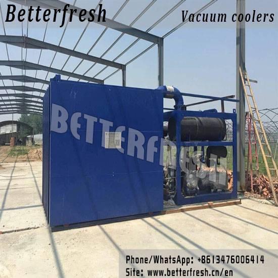 Manufacturer Betterfresh supplys Vacuum Cooling Farm Cooling Vegetable Cooling Vacuum Cooler for rap