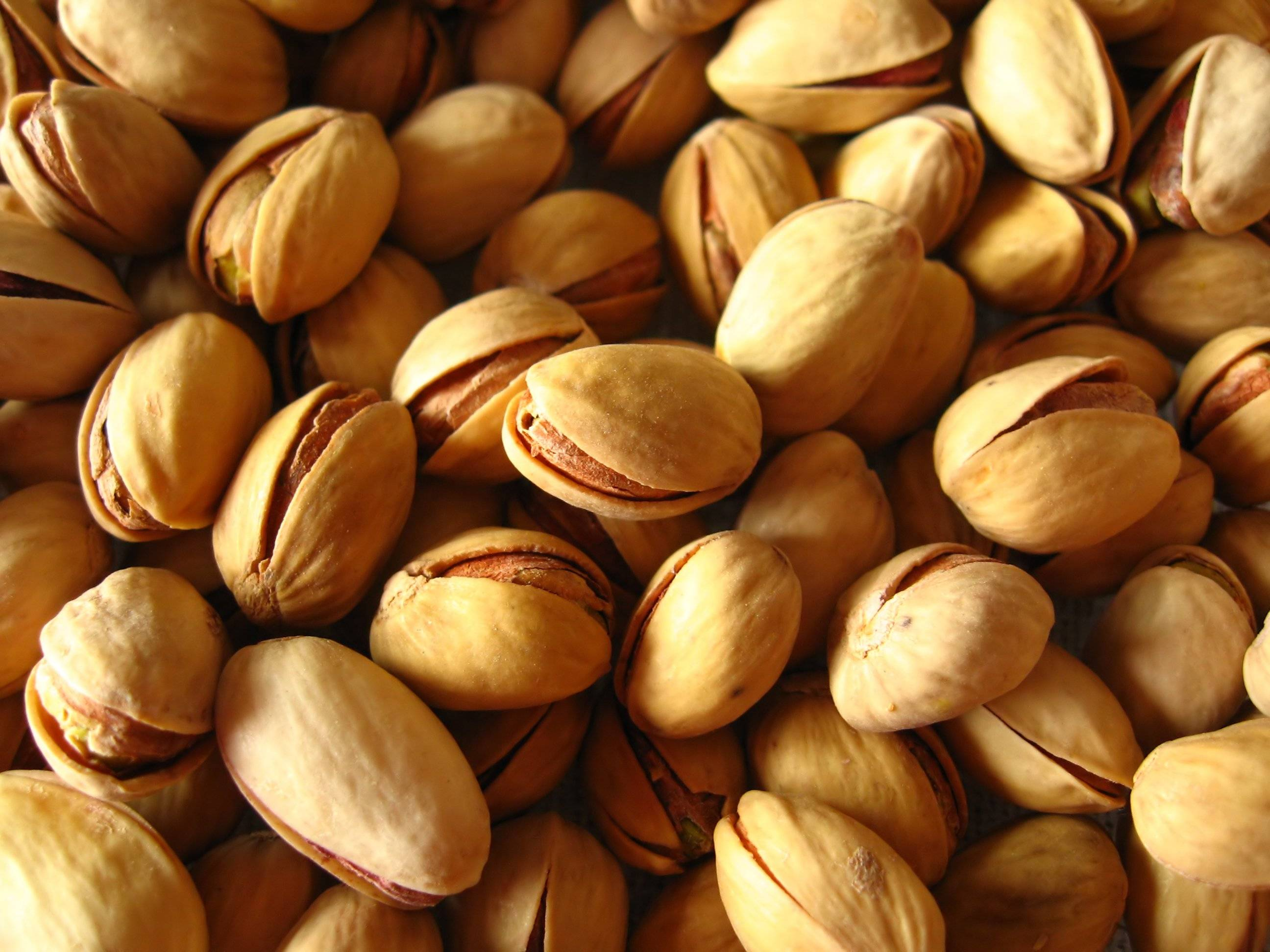 High Quality Resonable Price Iranian Pistachio Nuts