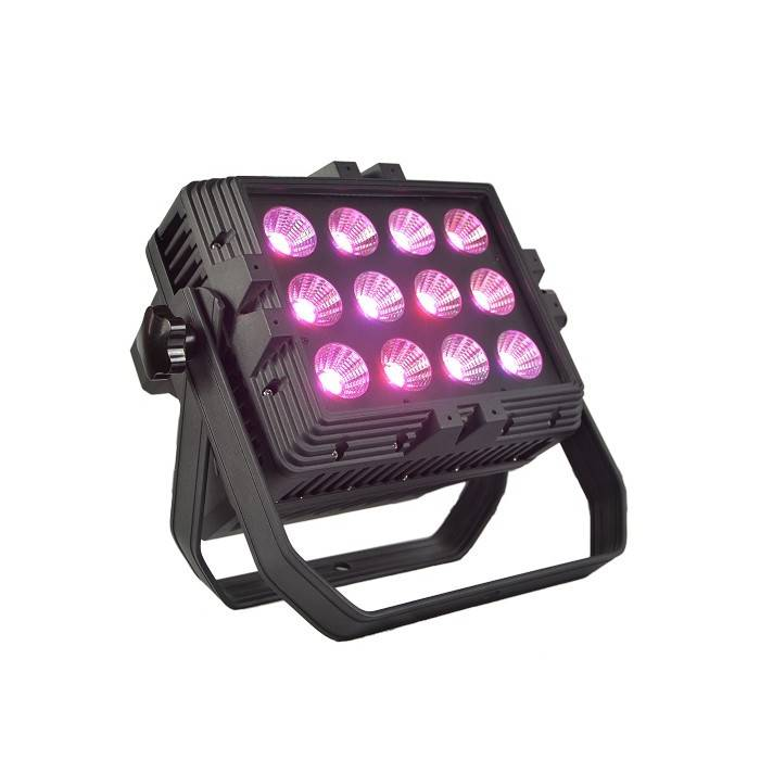 12X15W R/G/B COB LED Par Light (Outdoor Rated)