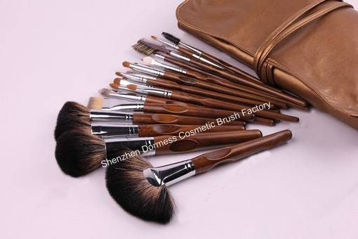 22-piece Professional Cosmetic/Makeup Brush Set, Hair:Goat,sable,raccoon and nylon hair, Wood Handle