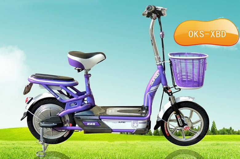 Electric Bicycle (OKS-XBD)