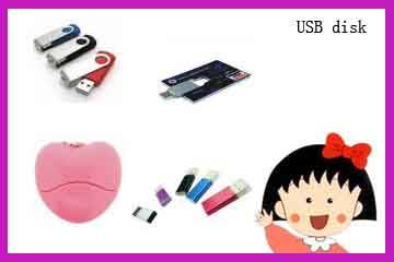 Fashion Design USB Flash Drives