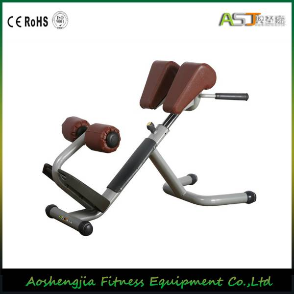 A035 Roman Chair Fitness Gym Equipment