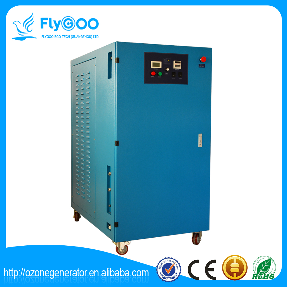 100g Ozonator for Drinking Water Treatment