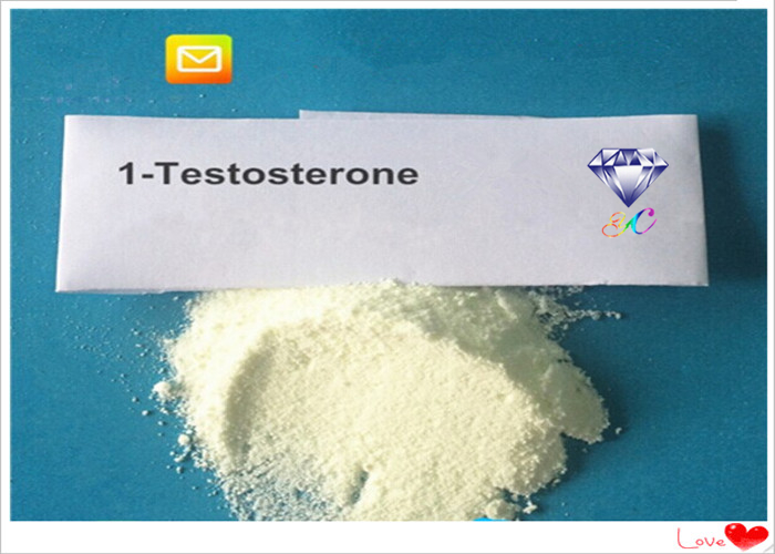 1 Testosterone DHB Anabolic Steroid Powder CAS 65-06-5 For Building Muscle Mass