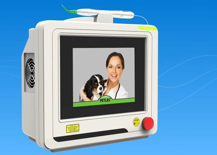 Dog Laser Therapy Veterinary New Tool