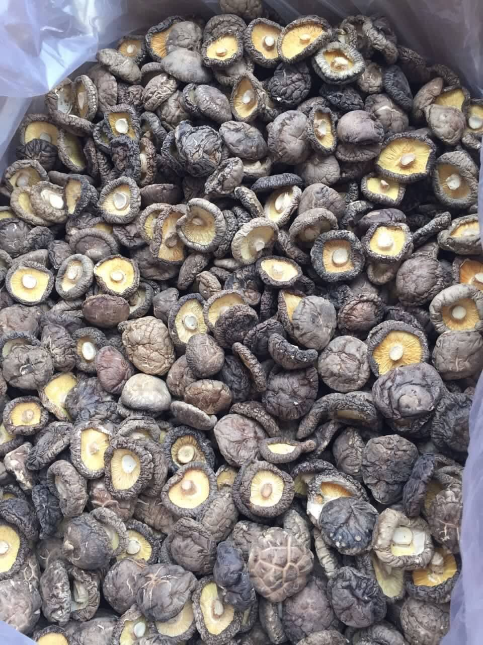 Dried Shiitake in Whole