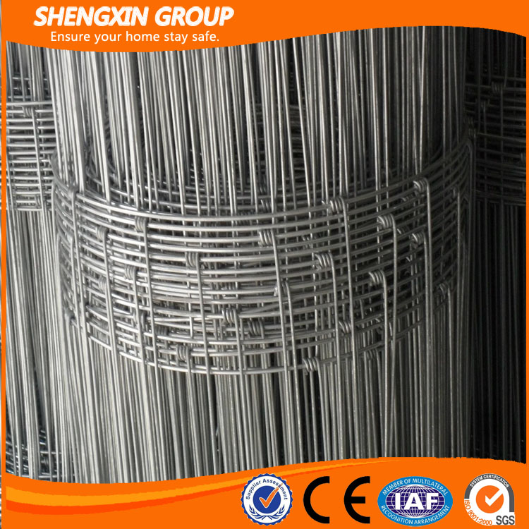 China Manufacturer Hot Sale High Quality Sheep Wire Mesh Fence
