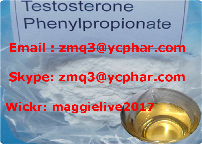 99% Healthy Muscle Building Steroids Testosterone Phenylpropionate CAS 1255-49-8