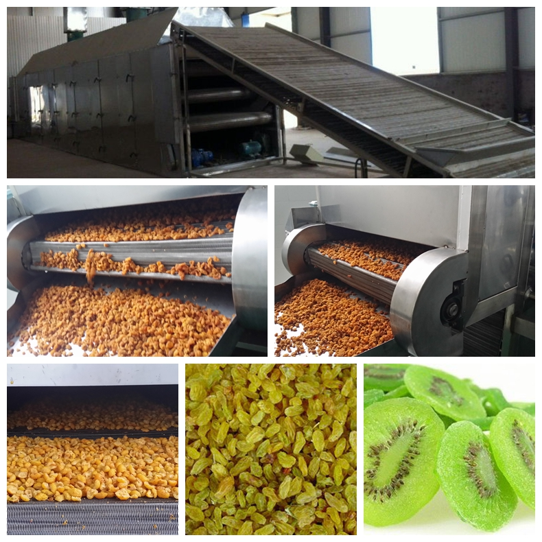 dried fruit processing line