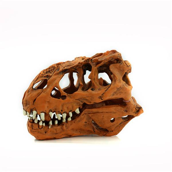 New 1/10 Tyrannosaurus Rex dinosaur Resin Fossil skull Model Collectibles Gift animal skeleton model