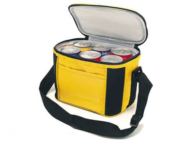 RT nylon cooler bag- 9 cooler bag
