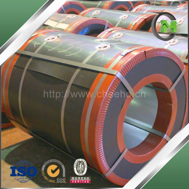 Prepainted Steel in Coil Form from China