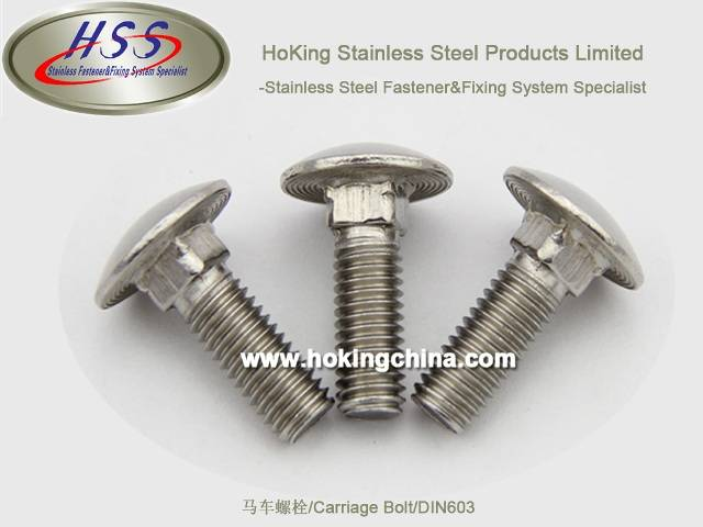 SGS Apprvoed Stainless Steel Carriage Bolt(HSS-003)/DIN603