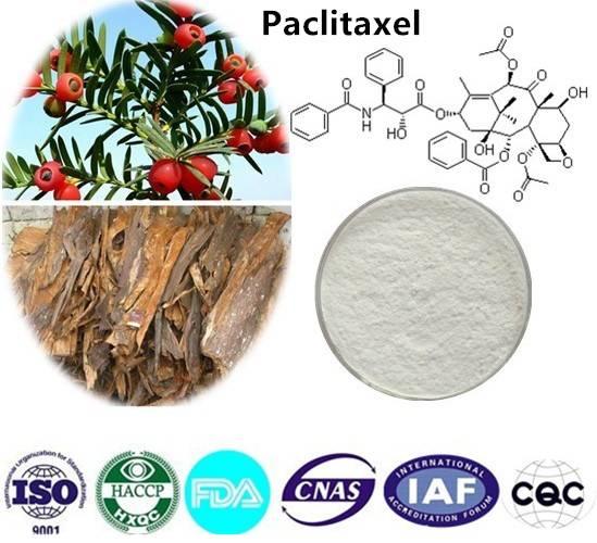 Paclitaxel  99% HPLC CAS NO:33069-62-4 10g/bag