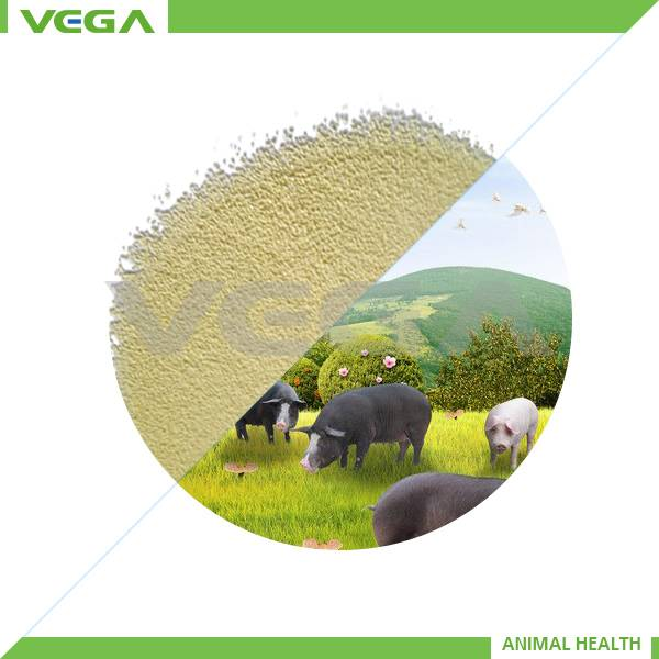 high quality Kitasamycin 10% for animal /kingdomway in antibiotic