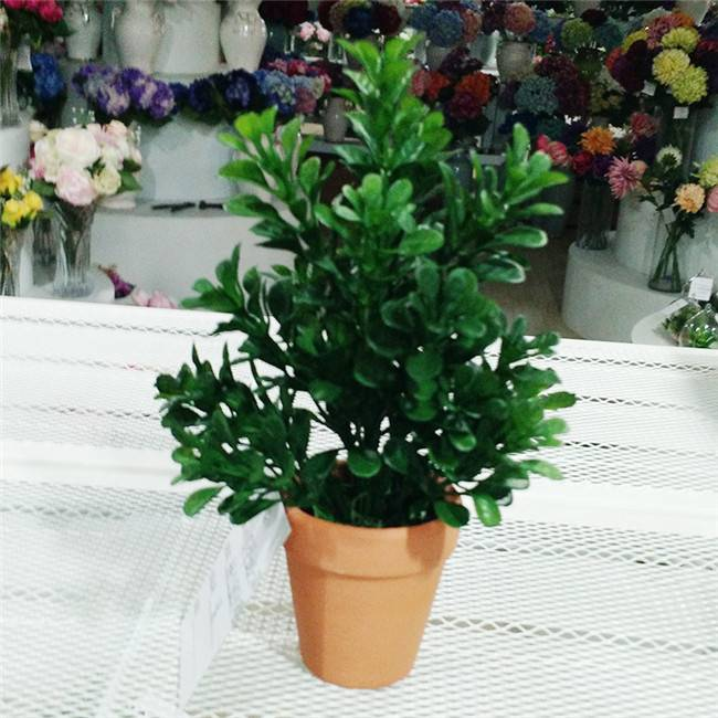 Small Artificial Potted Indoor Plant