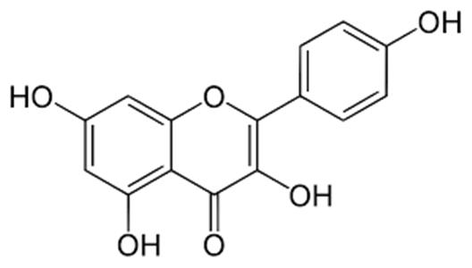 Research use kaempferol 520-18-3