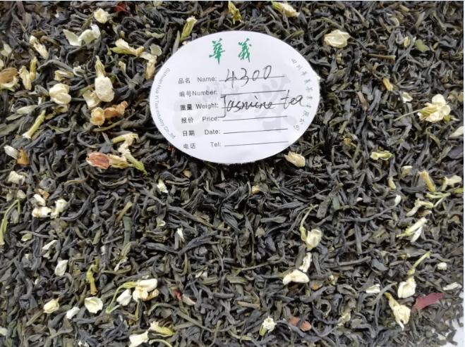 Jasmine Tea4300,4301,4302,4307,4308,4309
