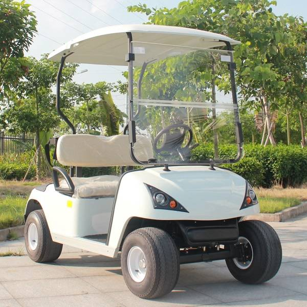 Marshell factory 2 seater electric golf cart with CE