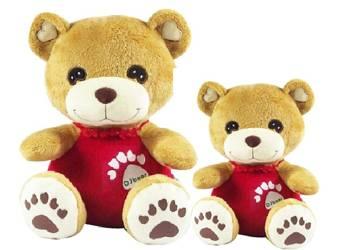 DJ Bear Educational Talking Toys