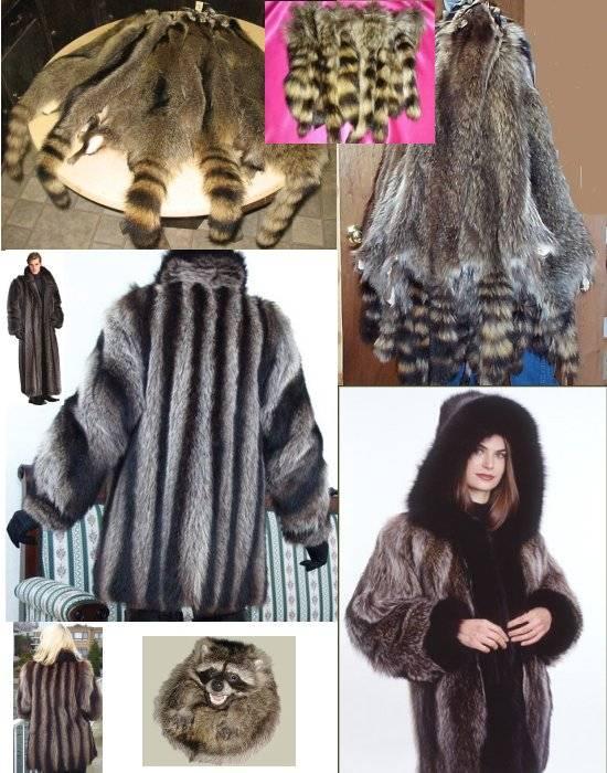 American Raccoon Fur Pelts