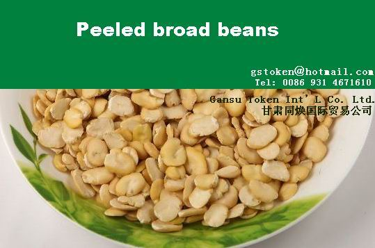 Peeled Broad bean