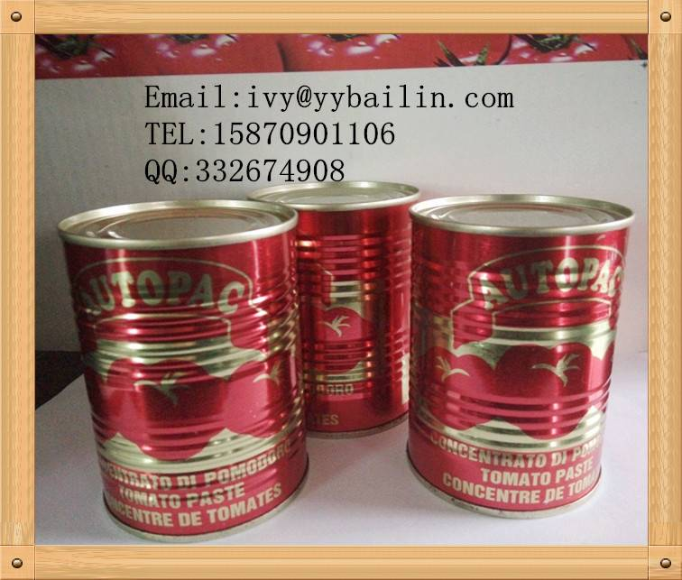Price canned tomato paste with competitive price