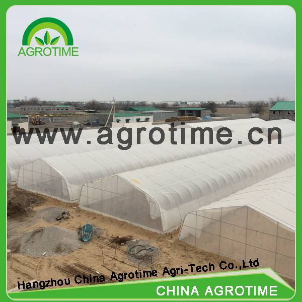 Agrotime commercial greenhouse/selling greenhouses used