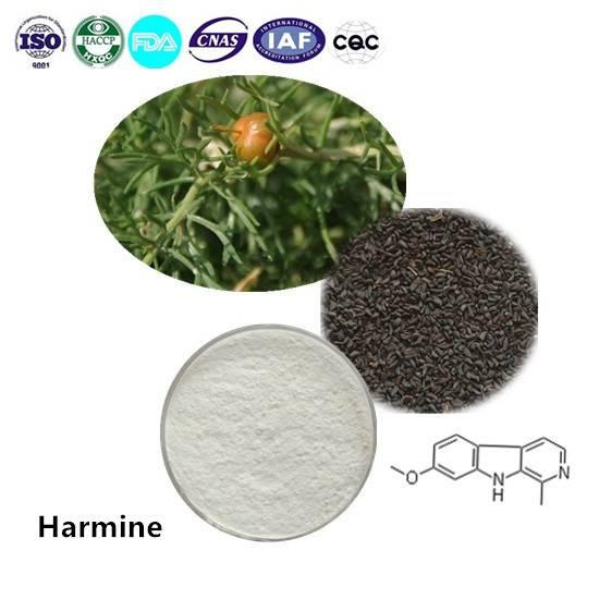 Harmine 98% HPLC CAS NO:442-51-3 1g/bag