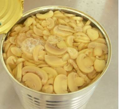 400g/200g Canned mushroom pieces and stems for export