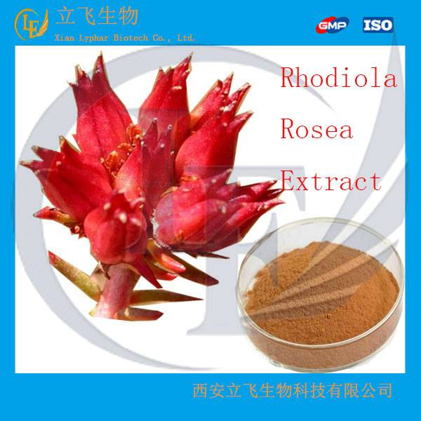 Top Quality Rhodiola Rosea Powder Extract