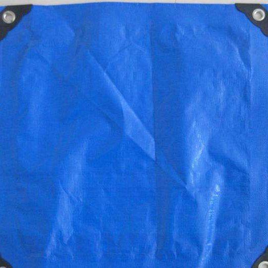 China portable polyethylene taupaulin for hotsale