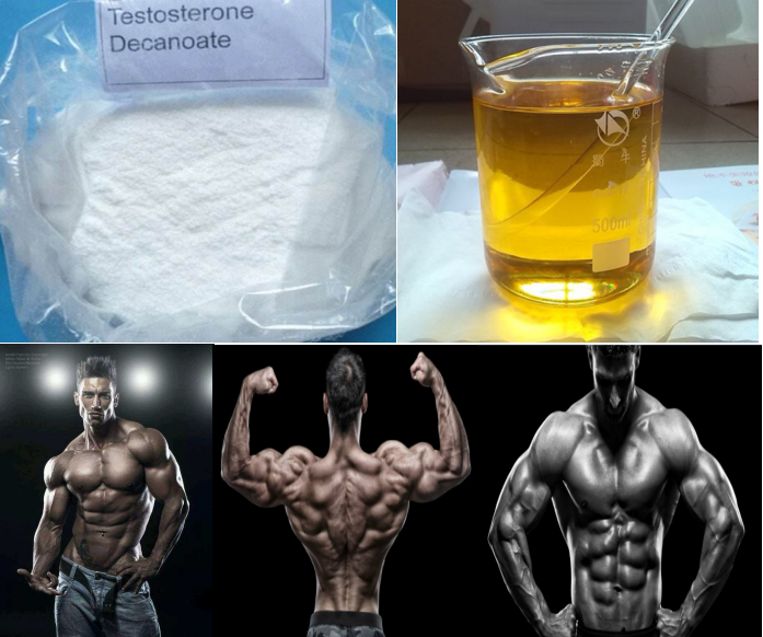 99.0% High Purity Testosterone Decanoate Testosterone Deca raw steroid powder for bodybuilding