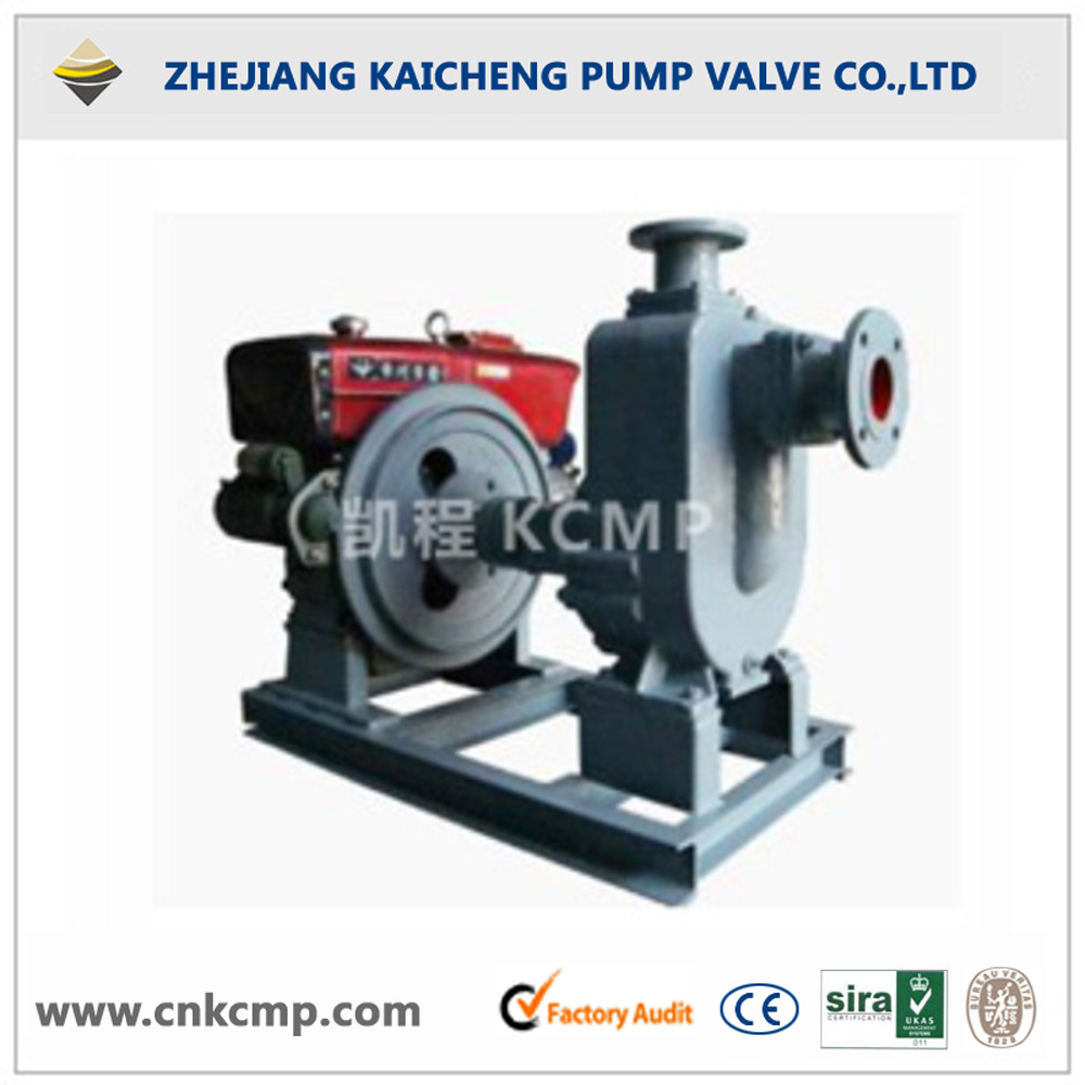 Diesel Engine Sewage Water pump