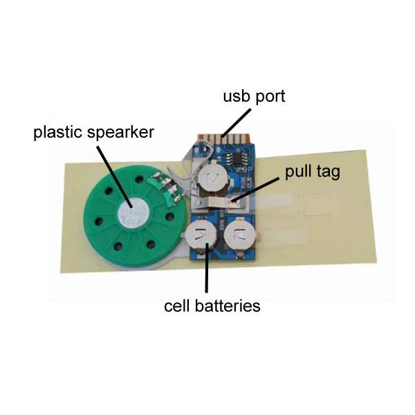 Programmable Sound Modules for Greeting Cards, Used with OTP IC Writer