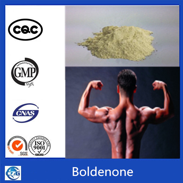 99% Muscle Building Steroid Hormone powder Boldenone