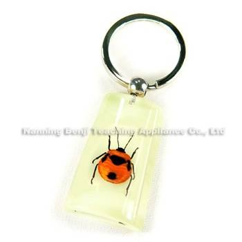 Custom Souvenirs Keychain Gifts Carry Small Pendant